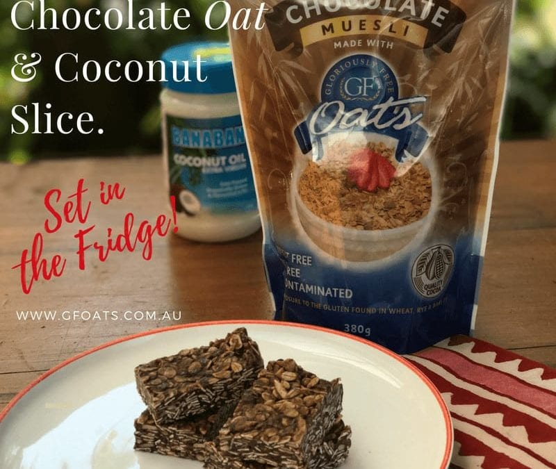 Chocolate Oat Coconut Slice