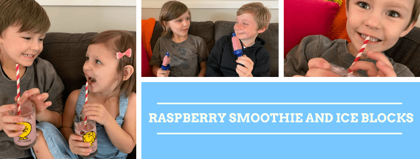 Raspberry Oat Smoothie & Ice Blocks